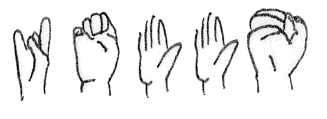 Irish Sign Language interpreting services